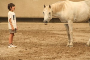 apaiser-enfant-cheval
